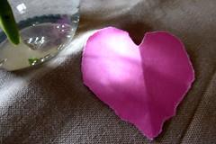 Herz! (erix!) Tags: love cutout paper heart papier paperheart