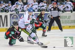 "DEL15 Düsseldorfer EG vs. Augsburg Panthers 28.12.2014 007.jpg • <a style=""font-size:0.8em;"" href=""http://www.flickr.com/photos/64442770@N03/16170213656/"" target=""_blank"">View on Flickr</a>"