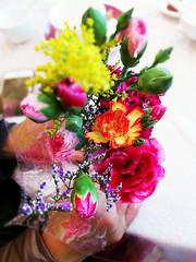 A Bunch of Flowers (huiaaron) Tags: flowers macro flora colours mum bunch mobilecamera mobilephoto bunchofflowers vivoxshot