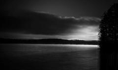 Sweden (Rosa Anastasia Scheipers) Tags: sea sun white black night forest dark day alone sweden friendly feeling vrmland skandinavia sunne scanik
