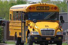 South Colonie CSD #89 (ThoseGuys119) Tags: ic bluebird schoolbus albanyny thomasbuilt southcoloniecentralschools