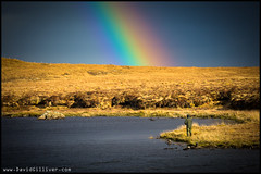 Fishing for gold (Pikebubbles) Tags: greatbritain colour colors weather landscape rainbow fishing colours britain lewis rainbows isleoflewis davidgilliver fishingforgold davidgilliverphotography