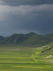 Piano Grande (Fraser P) Tags: flowers italy mountains primavera landscape spring umbria castelluccio pianogrande fiorita
