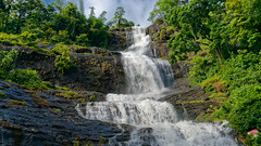 _DSC4779 (rosarioc62) Tags: munnar hill station india landscapes stream hills waterfalls bridge