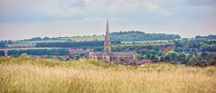 Salisbury Cathedral (Nikki & Tom) Tags: uk grass cathedral fields salisbury wiltshire oldsarum cps16
