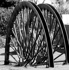 Split Wheel (richardsolway) Tags: wheel head gear iron steel feature display cornwall redruth crofty mine mining spokes