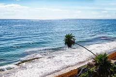 MEXICO - Tulum - Quintana Roo (Infinita Highway!) Tags: ocean sea seascape praia beach nature america mexico highway sony central tulum playa alpha infinita spiagia