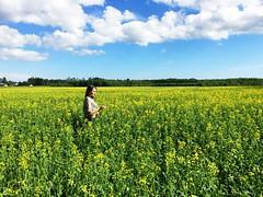 Aland Islands. (f_delirium) Tags: flowers field finland landscape islands aland