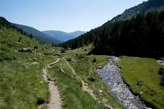 Zejście z przełęczy Fontargent