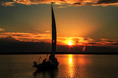 Into the Sunset (Threin Ottossen) Tags: sunset boat sea water seaside ocean seascape sky skyscape outdoor outdoorliving clouds reflection landscape travel sailboat sail serene summer summertime evening dusk lolland denmaek inlet nakskov