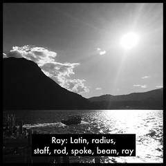 Ray: Latin, radius, staff, rod, spoke, beam, ray (Thomas Talboy) Tags: ifttt instagram switzerland suisse svizzera helvetia sunray sunbeam noir latin language lugano lake see meer rocco ticino lago schweiz