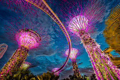Singapore (adrianchandler.com) Tags: singapore asia city supertrees bluehour night lookingup walkway metal colourful structures trees asian gardens grove bay neon funnels sky bright adrianchandler canon5dsr clouds