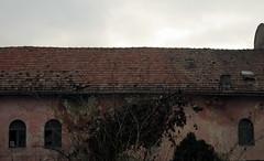 Gherla Synagogue (Bogdan Pop 7) Tags: architecture europe synagogue romania jewish transylvania transilvania roumanie zsinagga erdly sinagoga erdely gherla ardeal siebenbrgen romnia arhitectura templu arhitectur szamosujvar szamosjvr armenierstadt armenopolis