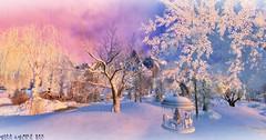 Let it Snow (Chioma Namiboo Jinn) Tags: life winter snow photography avatar sl second snowing blizzard colder windlight slwindlight secondlifeexploration trasognoerealta