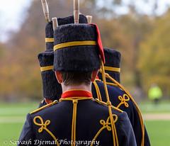 DSC_0723.jpg (Sav's Photo Gallery) Tags: city uk horses london westminster uniform outdoor capital cannon artillery hydepark royalhorseartillery kingstroop fieldguns d7000 savash
