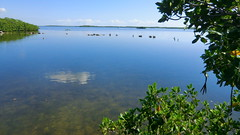 Key Largo: John-Pennekamp-State-Park (Traveller-Reini) Tags: ocean statepark travel usa beach water keys coast wasser natural florida outdoor insel saltwater kste ozean gufofmexico