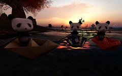 Adventure Awaits! (Teddi Beres) Tags: life bear sunset cute water fun boat poetry poem teddy sweet sl adventure cuddly second