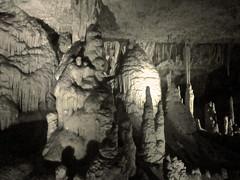Grotte di Postumia - Postojna caves (verul1968) Tags: caves slovenia slovenija speleo grotte postojna postumia