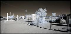 Corner View (NoJuan) Tags: california olympus fisheye infrared daytrip californiadesert ep2 digitalinfrared fullframefisheye irconversion infraredconversion nilandca olympusep2 9mmfisheyebodycaplens 9mmbcl micro43infrared