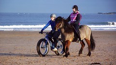 riding on a winter beach (byronv2) Tags: winter sea horse beach animal bike river cycling coast scotland waves tires riding pony coastal cycle rider northberwick equestrian tyres firthofforth riverforth yellowcraig eastlothian beachbike rnbforth