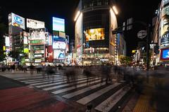 Shibuya Crossing by night (Federica_Guerra) Tags: japan tokyo crossing shibuya