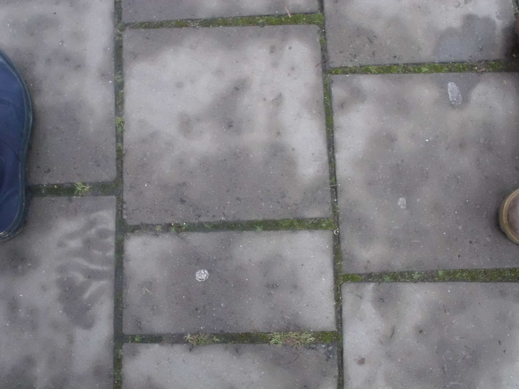 Terrastegels Beton 30x30.The World S Most Recently Posted Photos Of Beton And Tegels