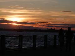 Spring Season (Donnie Nicholson) Tags: silhouete brooklynbridgepark 2013