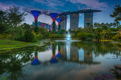 MBS Sunset.jpg (Katherine Young) Tags: city travel blue trees sunset sky reflection water gardens architecture clouds lights hotel bay pond nikon singapore asia cityscape wideangle casino hdr mbs d800 1635 1635mm hdrcity supertrees