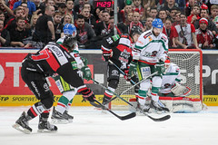 """DEL15 Kšlner Haie vs. Augsburg Panthers • <a style=""""font-size:0.8em;"""" href=""""http://www.flickr.com/photos/64442770@N03/16301428382/"""" target=""""_blank"""">View on Flickr</a>"""