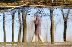 Jail Cell or Trunk call (Alex L'aventurier,) Tags: trees reflection water walking puddle person movement montral quebec montreal branches reflet human qubec arbre mouvement flaque parcmaisonneuve marcher