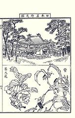 Bottom  China tea and grass (Japanese Flower and Bird Art) Tags: china flower art grass japan japanese book thea tea picture poaceae nihonga intaglio sinensis theaceae yasujiro matama readercollection