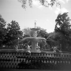 Forsyth Park Fountain (peachy92) Tags: 120film 2016 blackwhite blackandwhite chatham chathamcounty film filmcamera fuschiafusion holga holga120n holgaglo120n holgaglo120nfuschiafusion savannah square chathamcountyga stpatricksday2016 chathamcountygeorgia fountains fountain stpatricksday forsythpark forsythparkfountain downtownsavannah ga georgia us usa unitedstates unitedstatesofamerica savannahga savannahgeorgia holgagraphy ilfordhp5plus