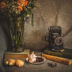 Still Life (Photo Alan) Tags: camera stilllife food canada rose zeiss canon books carl canon5dsr carlzeissdistagon35mmf14ze