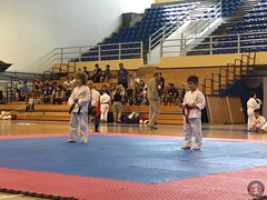 stefanou_15_5_2016_knockdown_55