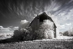 Old Barn Infrared (Notley) Tags: sky field clouds barn rural landscape ir farm missouri infrared april bucolic 2016 10thavenue notley ruralphotography lifepixel infraredconversion notleyhawkins coopercountymissouri missouriphotography httpwwwnotleyhawkinscom notleyhawkinsphotography windsorplacemissouri
