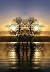 Rowardennan Sunset (Michelle O'Connell Photography) Tags: scotland sunset rowardennan balmaha mirrored reflection michelleoconnellphotography summersunset