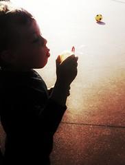 Mille #bolle blu ... #balls #child #kid (Mamle) Tags: kid child balls bolle