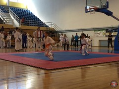 stefanou_15_5_2016_knockdown_14