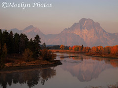 Grand Teton NP-Oxbow Bend in the Early Morning (moelynphotos) Tags: trees fall colors river snake grand mountmoran tetons grandtetonnationalpark oxbowbend moelynphotos reflectionsl