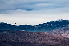 death valley raven 2