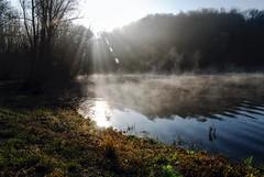 0340 Sunrise On The Lake (Hrvoje Simich - gaZZda) Tags: sun lake grass fog forest nikon croatia ligt rays nikond200 borovik sigma17702845 gazzda hrvojesimich