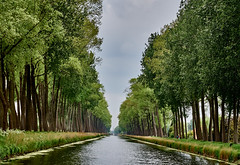 Looking down the Napoleon Canal (wellingtonandsqueak) Tags: canal belgium c1 damme