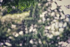 summerrain on my skin (***toile filante***) Tags: summer rain june juni sommer poetic dreamy emotional emotions regen summerrain sommerregen poetisch