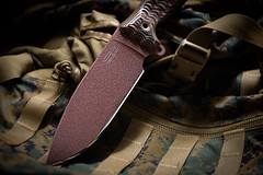 Busse Ash 1 (gh2010ism) Tags: knife combat sharp blade steel handle cut busse outdoor camping hunting food solider fishing skinning recent