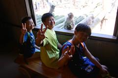 2016 北海道D6 4x6 3250 (chaochun777) Tags: 北海道 旭山 動物園 露營 自由行 猴子 長臂猿 猩猩 雲豹 花豹 老虎 獅子 北極熊 企鵝