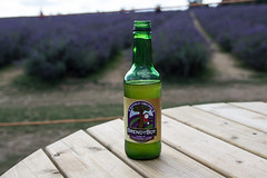 Lavender cider - Brandy Boy (pavlinajane) Tags: lavender plant flower purple aroma bouquet herbal herb aromatherapy natural nature violet bunch beauty floral garden summer isolated aromatic health blossom provence background beautiful white healthy blue fragrant design fresh bloom lilac field flora gardening vector scented art organic medicine scent illustration botany colorful blooming fragrance countryside color leaf