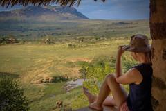 kenya lodge safari (sergei.ribant) Tags: wildlife tsavo nikon kenia kenya d7100 safari savanne afrika africa amboseli nature lodge