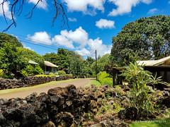 Grove Farm (15 of 16) (Chuck 55) Tags: grove farm kauai hawaii