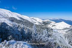 Harry_30840a,,,,,,,,,,,,,,,,,,,,,,Hehuan Mountain,Taroko National Park,Snow,Winter (HarryTaiwan) Tags:                      hehuanmountain tarokonationalpark snow winter  mountain     harryhuang   taiwan nikon d800 hgf78354ms35hinetnet adobergb