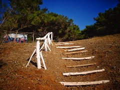 White stairs to the green heaven! (panoskaralis) Tags: trees tree pine green stairs wood forest bluesky sky nature outdoor landscape lesbos lesvosisland lesvos island mytilene greece greek hellas hellenic aegean aegeansea
